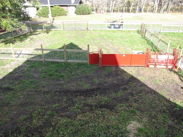 New Corrals at Weaning